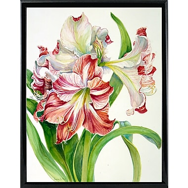 Winston Porter 'Red And White Amaryllis' Print; Black Metal Framed Paper