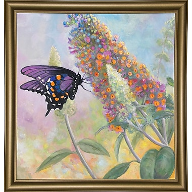 Winston Porter 'Admiral Butterfly' Graphic Art Print; Bistro Gold Framed Paper