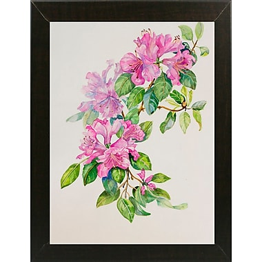 Bay Isle Home 'Pink Azaleas' Rectangle Frame Print; Brazilian Walnut Wood Medium Framed Paper