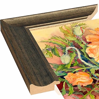 Alcott Hill 'Double Poppies' Print; Rolled Canvas