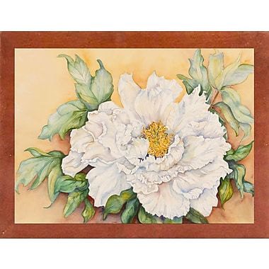 Alcott Hill 'A Peony Study' Graphic Art Print; Canadian Walnut Wood Medium Framed Paper