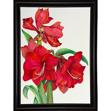 August Grove 'Amaryllis Standing Tall' Print; Bistro Expresso Framed Paper