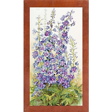 August Grove 'Delphinium Cluster' Print; Canadian Walnut Wood Medium Framed Paper