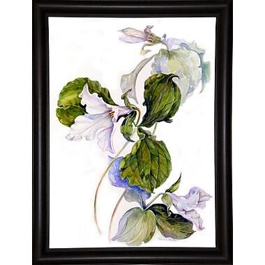 Charlton Home 'White Trillium' Print; Bistro Expresso Framed Paper