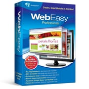 WebEasy Professional 10 for Windows, 1 User [Download]