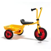 Winther® Duo Tricycle With Tray (WIN583)