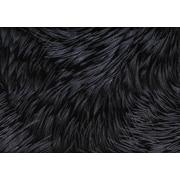 "Monarch Pillow, 18""x 18"", Black Feathered Velvet"
