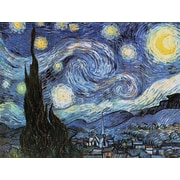 Reeves™ Large Painting By Numbers Starry Night (PBNACL11)