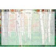 Biggies Dry Erase Stickie Monthly Calendar Aspen Grove (DC-ANG-36)