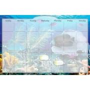 Biggies - Calendrier mensuel autocollant et effaçable à sec Coral Garden (DC-CLG-36)