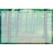 Biggies Dry Erase Stickie Monthly Calendar Forest Mist (DC-FTM-48)