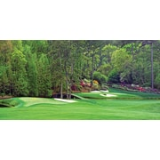 Biggies Golf Mural Augusta - Hole #12 (GM-AGA-54)