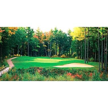 Biggies Golf Mural New England - Hole #16 (GM-NGD-80)