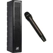 Amplivox – Haut-parleur d'enceinte amplifié avec microphone sans fil