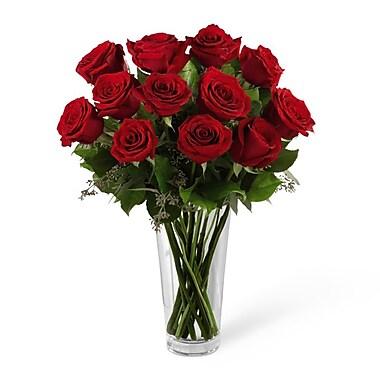 Michael Adams 12 Red Rose Romance Bouquet