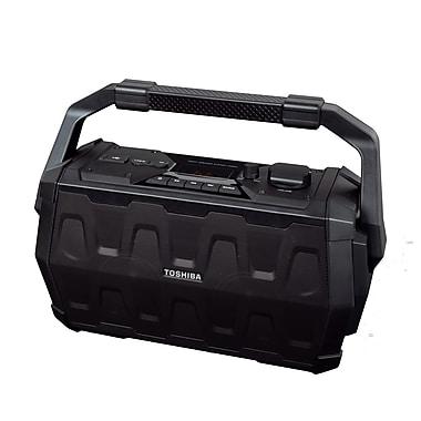 Toshiba – Système de haut-parleur sans fil rechargeable Trolley TY-ASC20
