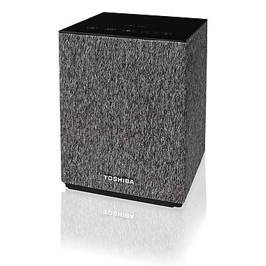 Toshiba – Haut-parleur Bluetooth avec Google Cast TY-GC1000
