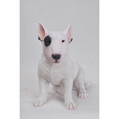 Hi-Line Gift Ltd. 87725, Bull Terrier Statue