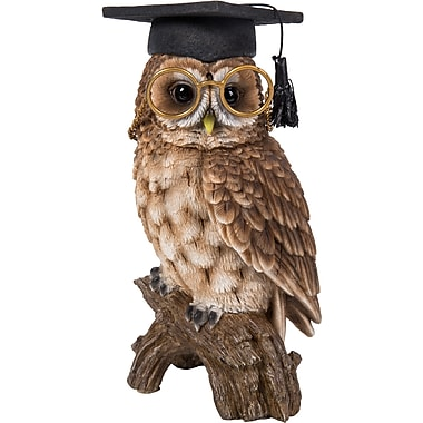 Hi-Line Gift Ltd. 87702-A, Owl with Glasses and Graduation Cap Statue
