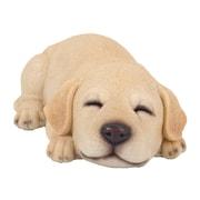 Hi-Line Gift Ltd. 87710-I, Sleeping Labrador Statue