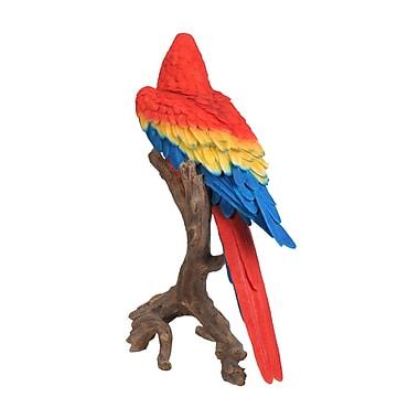 Hi-Line Gift Ltd. 87776, Macaw Statue