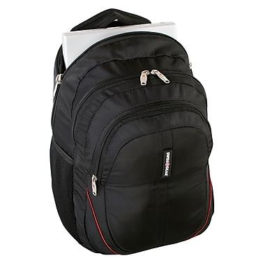 Swiss Gear Backpack fit 15.6