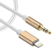 Exian Lightning to Aux Cable 1M