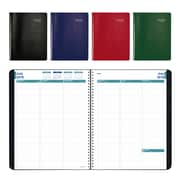 "Brownline® 2018/2019 Academic Weekly/Monthly Appointment Planner, 11"" x 8-1/2"", English, Assorted Colours (CA958.ASX)"