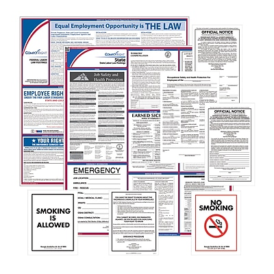ComplyRight Federal, State & Public Sector (English) Poster Set - New Hampshire (EFEDSTCRPSECNH)