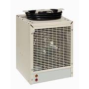 Dimplex dch4831l Fan-forced Construction Heater, 4800w/240v, Almond