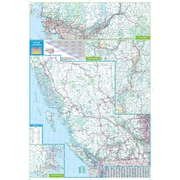 Globes, Maps & Flags | Staples