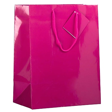 JAM Paper® Glossy Gift Bags, Large, 10