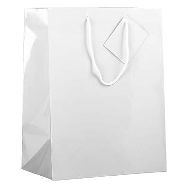 JAM Paper Sacs-cadeaux lustrés, grand format, 10 x 13 x 5 po, blanc, 6/paquet (673GLwha)