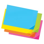 "Pacon Super Bright Tagboard, 12"" x 18"", Bright Colours, 100 Sheets/Pack (PAC1712)"