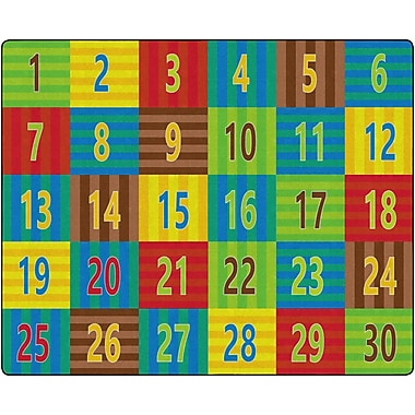 Flagship Carpets Counting Seating Rug, 10.9' x 13.2' (FE335-58A)