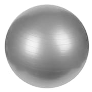 Sunny Health & Fitness Anti-Burst Gym Ball - 65cm