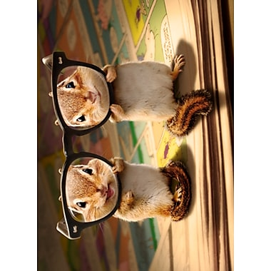 Avanti Birthday Card Chipmunk Wthick Glasses Staples