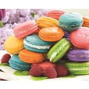 Springbok SP3310712 1000 Pieces Macarons! Puzzle