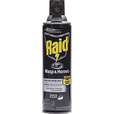 Raid Wasp/Hornet Killer Spray, Spray, Kills Hornet, Wasp, Mud Dauber, Yellow Jacket, Bugs, 14 fl oz, White