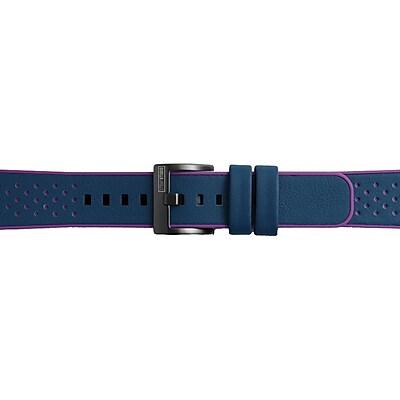 Samsung Hybrid Band for Gear Sport Smartwatch, Blue/Pink (GP-R600BREEADA)