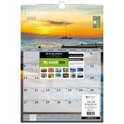AT-A-GLANCE® – Calendrier mural mensuel 2019, 12 po x 17 po, motifs tendance, anglais