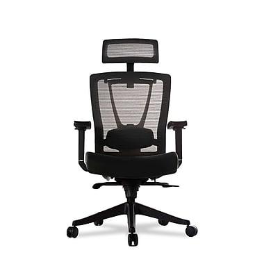 autonomous ergochair premium ergonomic office chair black a70