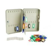 EMS Mind Reader Steel Key Box, Lock and Hooks, 60 Capacity, Grey