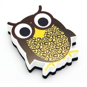 Ashley Magnetic Whiteboard Eraser, Wise Owl