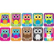 Color Owls Mini Whiteboard Erasers Non Magnetic, 10/Pk (ASH78007)