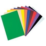 "Chenille Kraft Company Wonderfoam Sheets, Assorted Colors, Large, 9"" x 12"", 10/Pk, 3 EA/BD"