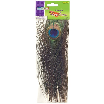Peacock Feathers, Assorted Colors, 12/PK, 2 PK/BD