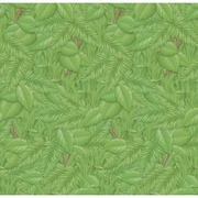 "Pacon Fadeless Bulletin Board Art Paper Roll, 48"" x 50', Tropical Foliage (PAC56255)"