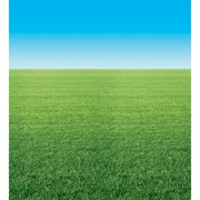 "Fadeless® Designs, 48""x50', Summer Horizon"
