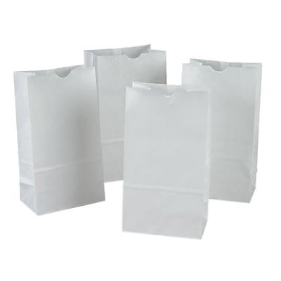 Rainbow® PAC72005 White Kraft Bags, 50 Bags